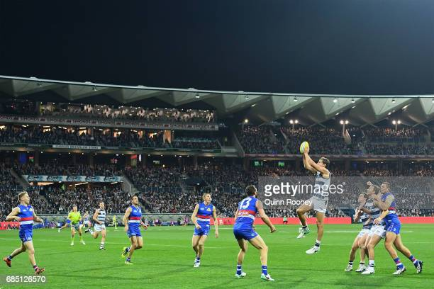 Jake Kolodjashnij of the Cats marks during the round nine AFL match between the Geelong Cats and the Western Bulldogs at Simonds Stadium on May 19...