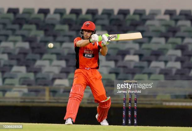 Jake Lehmann of SA plays a pool shot only to be caught during the JLT One Day Cup match between South Australia and New South Wales at the WACA on...