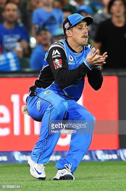 Jake Lehmann of the Adelaide Strikers c takes a catch during the Big Bash League match between the Adelaide Strikers and the Melbourne Renegades at...