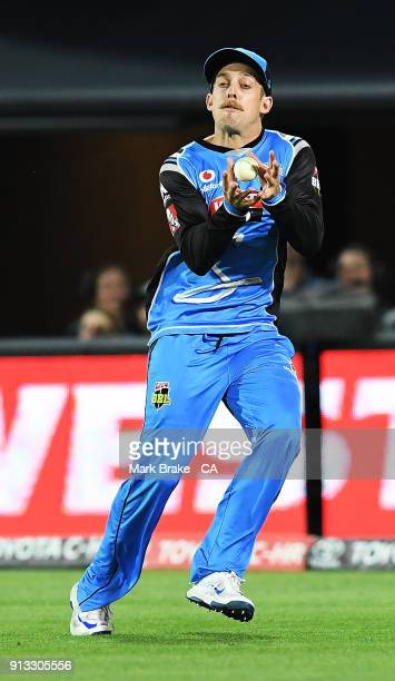 Jake Lehmann of the Adelaide Strikers drops Dwayne Bravo of the Melbourne Renegades during the Big Bash League match between the Adelaide Strikers...