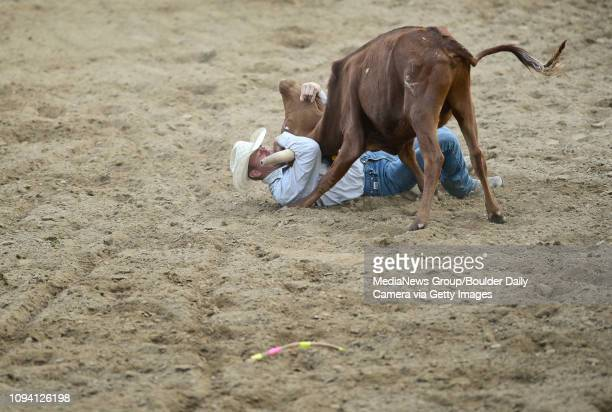 Jake Sterkel tries to get control of a steer during the steer wrestling competition Sunday Aug 4 at the Boulder County Fair in Longmont The CPRA...