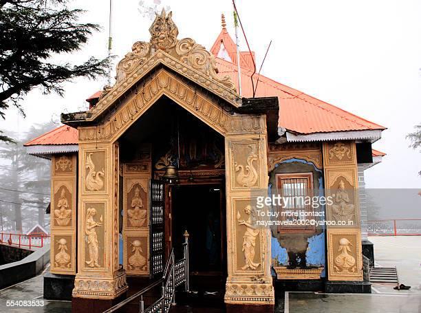 jakhu temple, shimla - shimla stock pictures, royalty-free photos & images