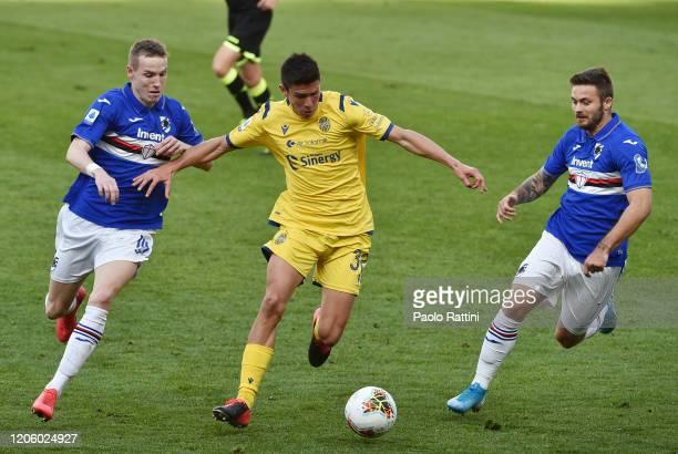 Jakub Jankto and Karol Linetty of UC Sampdoria battle fot the ball with Matteo Pessina of Hellas Verona during the Serie A match between UC Sampdoria...
