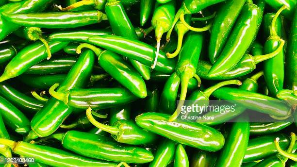 jalapenos - jalapeno pepper stock pictures, royalty-free photos & images