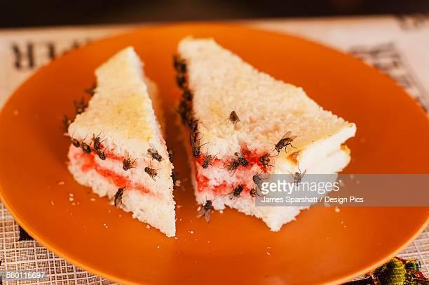 Jam sandwich with flies