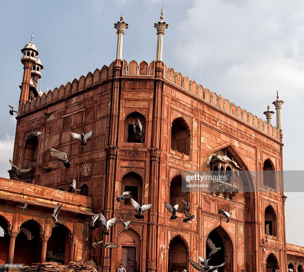 Jama Masjid, Delhi, India : Stock Photo