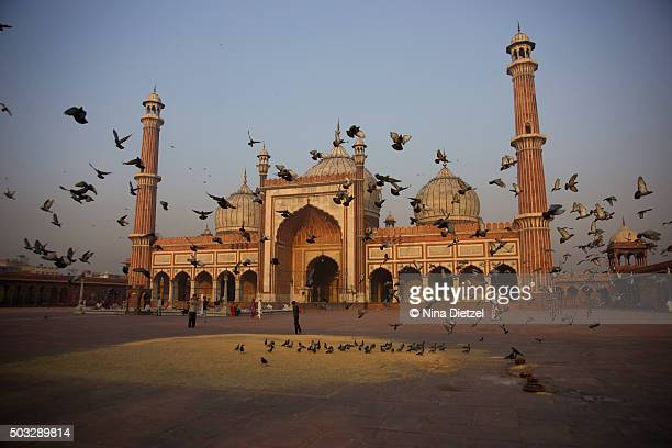 Jama Masjid Mosque, Delhi, at dawn