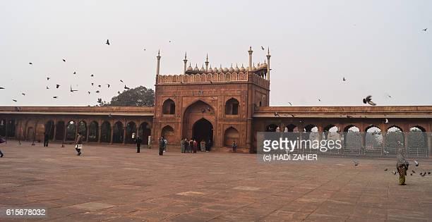 Jama Masjid Mosque | Delhi | India
