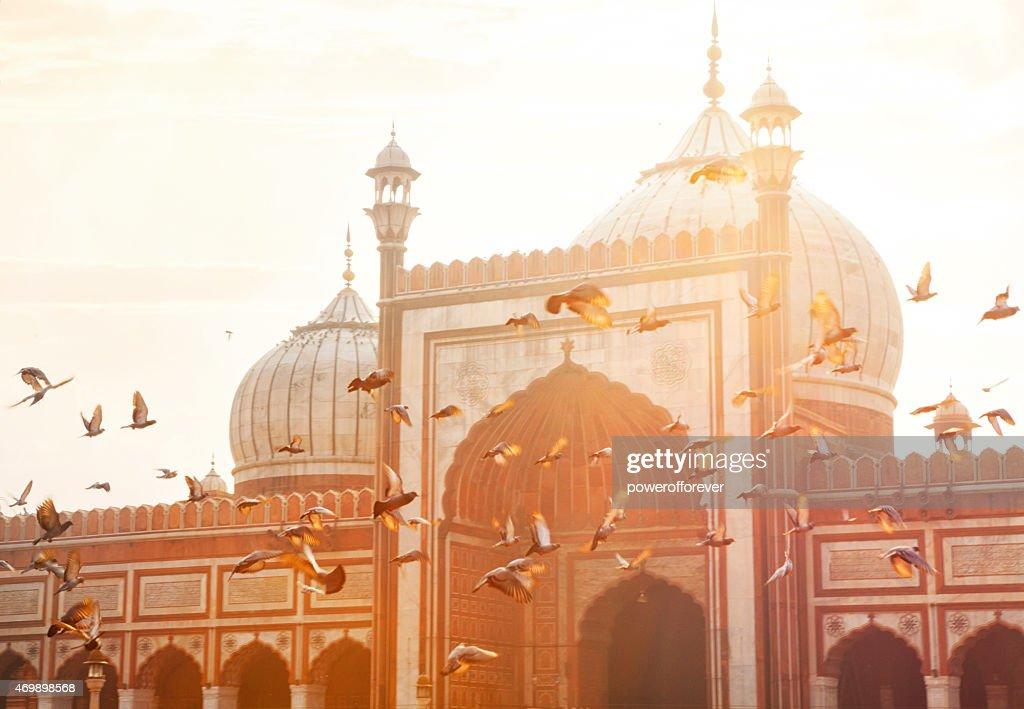 Jama Masjid - Old Delhi, India : Stock Photo