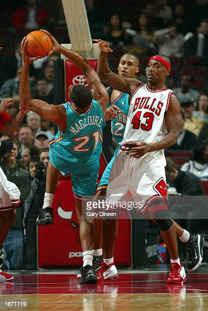 Jamaal Magloire of the New Orleans Hornets attempts an off balance shot against Corie Blount of the Chicago Bulls at the United Center on December 3...