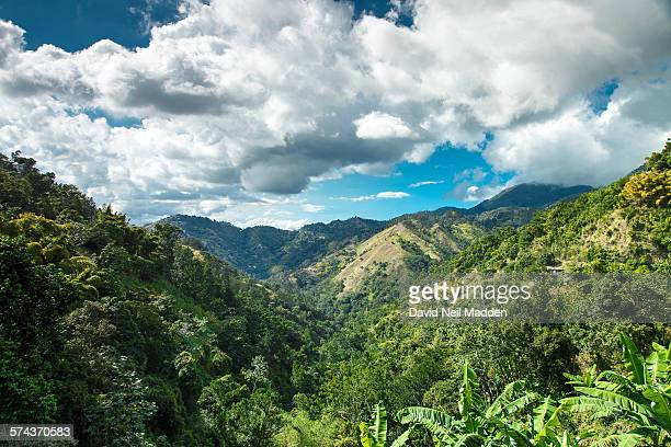 jamaica blue mountains - jamaica stock pictures, royalty-free photos & images