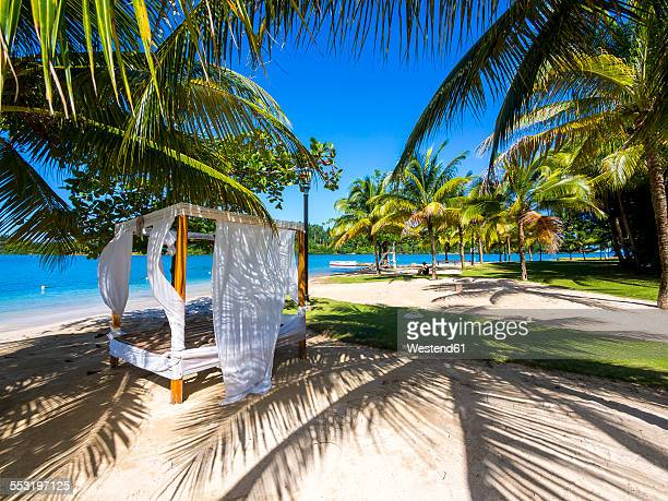 Jamaica, Port Antonio, Errol Flynn Marina, Sunbed under palms