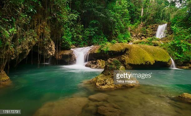 jamaica, tropical waterfall - paisajes de jamaica fotografías e imágenes de stock