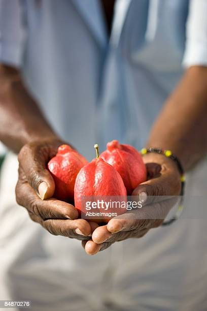 Jamaican man with Ackee Fruit