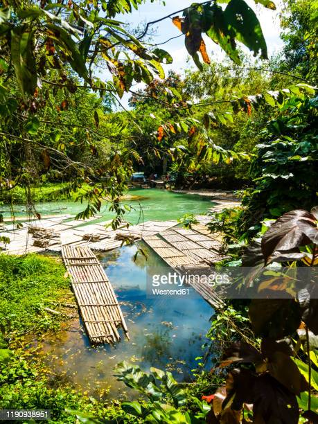 jamaika, region montego bay, rafting village, martha brae river, bamboo rafts - jamaica stockfoto's en -beelden