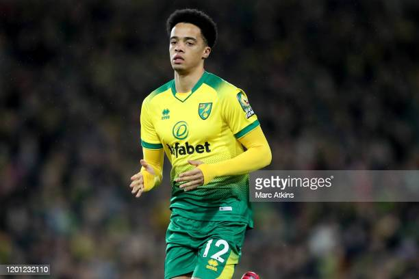 Jamal Lewis of Norwich City during the Premier League match between Norwich City and Liverpool FC at Carrow Road on February 15, 2020 in Norwich,...