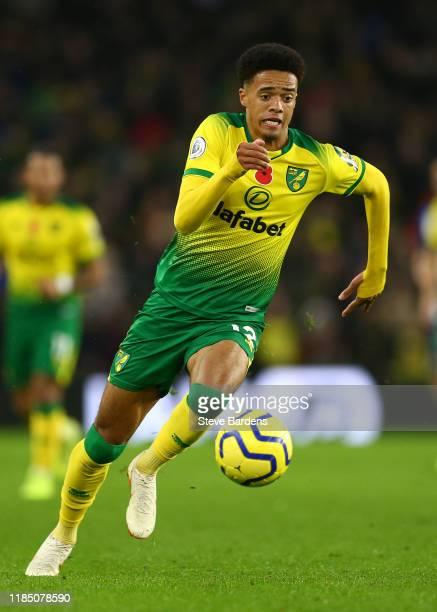 Jamal Lewis of Norwich City in action during the Premier League match between Brighton & Hove Albion and Norwich City at American Express Community...