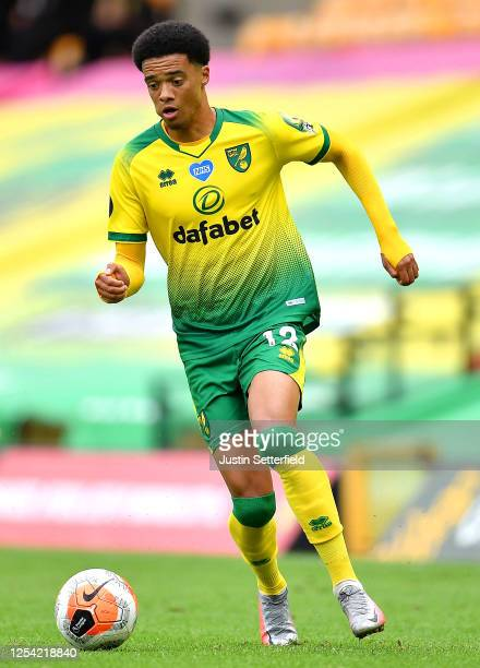 Jamal Lewis of Norwich City runs with the ball during the Premier League match between Norwich City and Brighton & Hove Albion at Carrow Road on July...