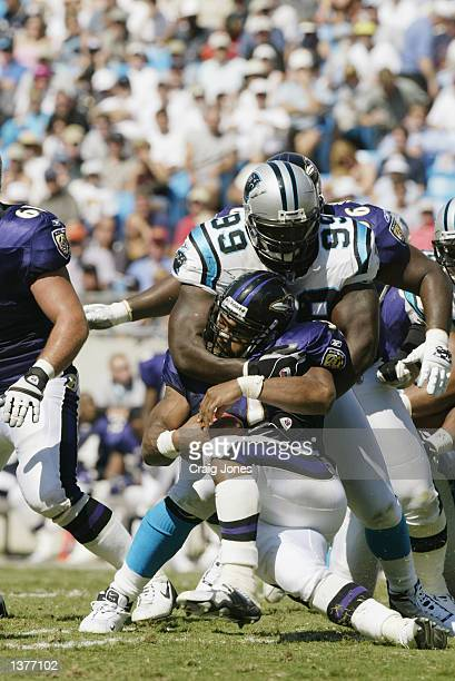 Jamal Lewis of the Baltimore Ravens is stuffed by Brentson Buckner of the Carolina Panthers at Ericsson Stadium in Charlotte North Carolina on...