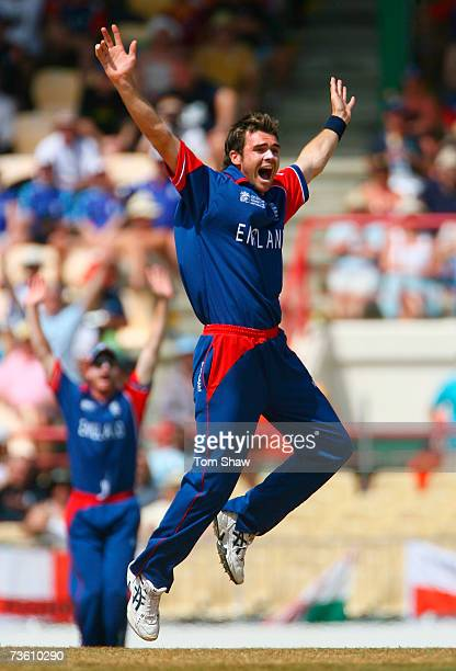 James Anderson of England appeals unsuccessfully for a wicket during the ICC Cricket World Cup Group C match between England and New Zealand at the...