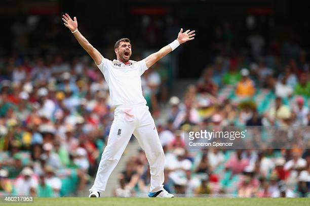 James Anderson of England celebrates dismissing Shane Watson of Australia for LBW during day one of the Fifth Ashes Test match between Australia and...