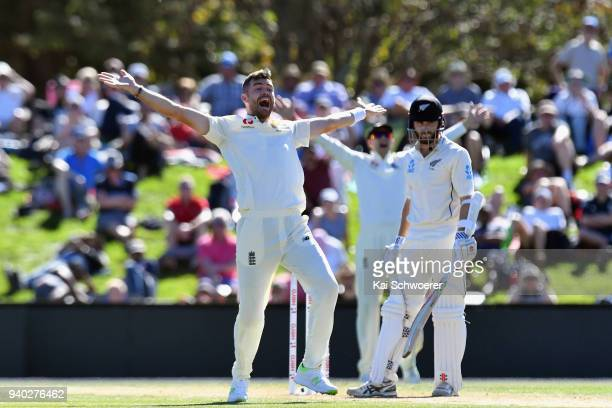 James Anderson of England unsuccessfully appeals for the wicket of Kane Williamson of New Zealand during day two of the Second Test match between New...