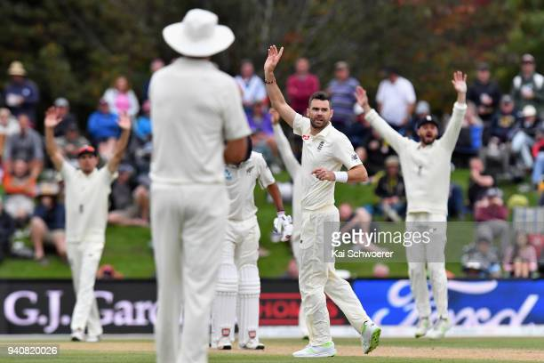 James Anderson of England unsuccessfully appeals for the wicket of Jeet Raval of New Zealand during day four of the Second Test match between New...
