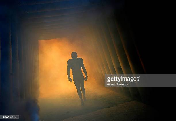 James Anderson of the Carolina Panthers is introduced before a game against the Dallas Cowboys at Bank of America Stadium on October 21, 2012 in...