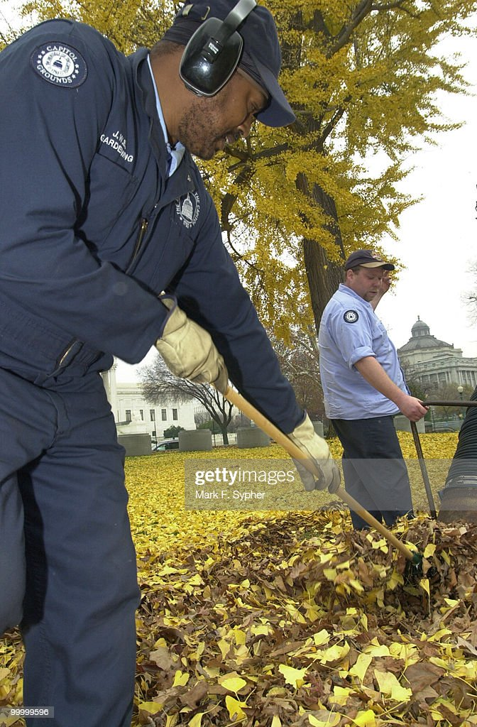 James Banks rakes leaves into the leaf vacume, in the hands of Brian Bradley. Banks has worked for the Architect of the Capitol for 22 years, Bradley for 9. Both work on the Grounds Crew.