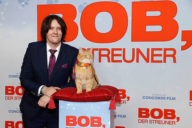 bob der streuner special screening in berlinの写真およびイメージ