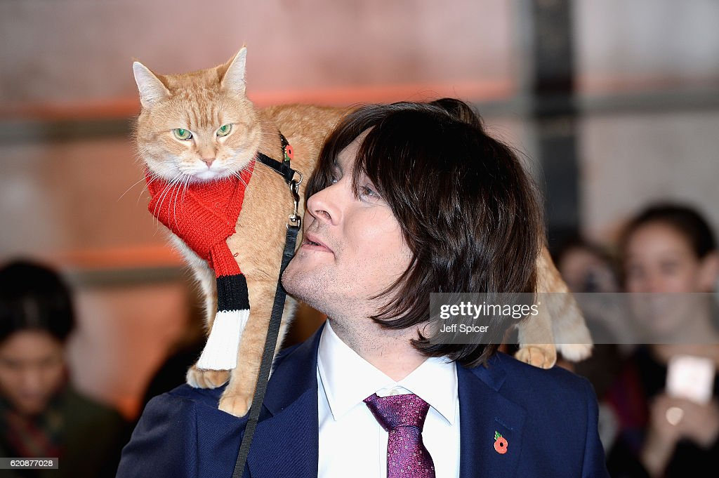 James Bowen and Bob the cat attend the UK Premiere of 'A Street Cat Named Bob' in aid of Action On Addiction on November 3, 2016 in London, United Kingdom.