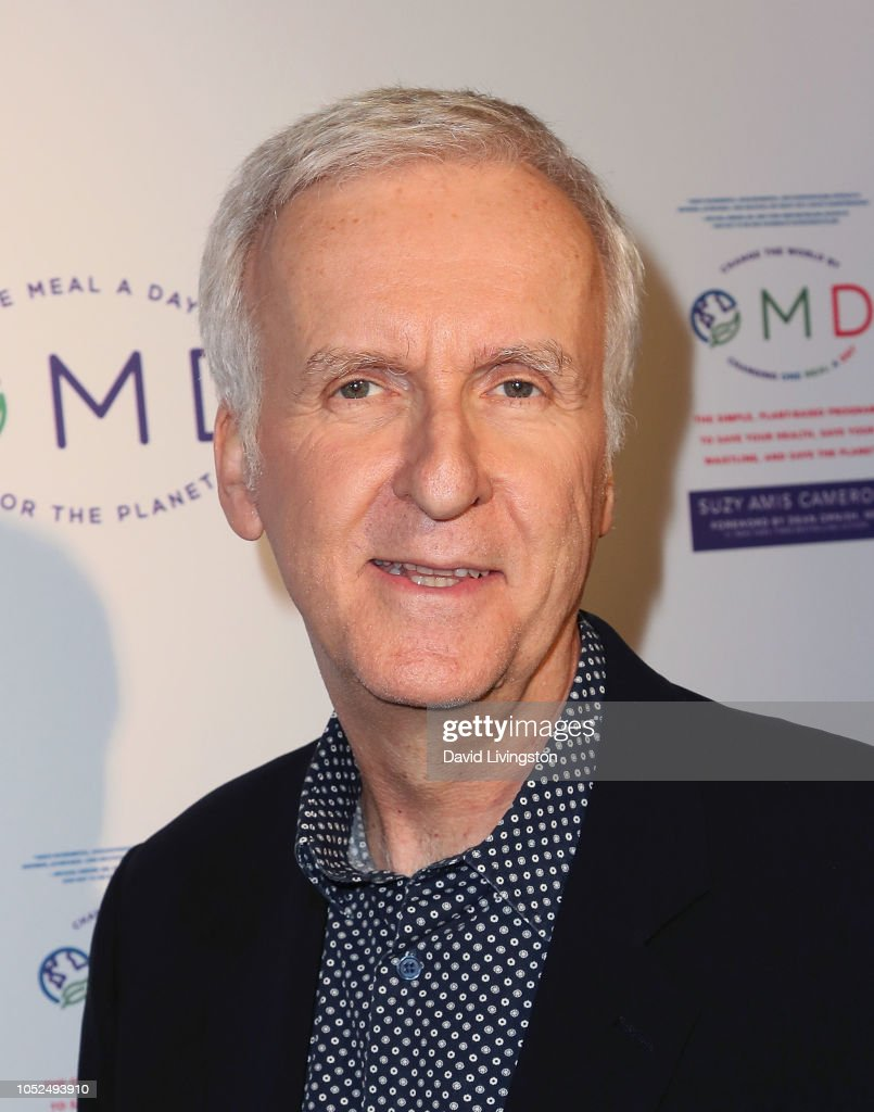 """James Cameron Hosts Book Launch Party For Suzy Amis For Her New Book """"OMD"""" : ニュース写真"""
