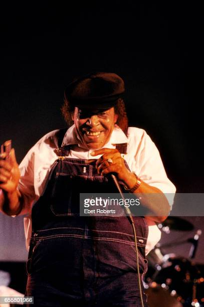 James Cotton at the Beale Street Music Festival in Memphis, Tennessee on May 6, 1994.