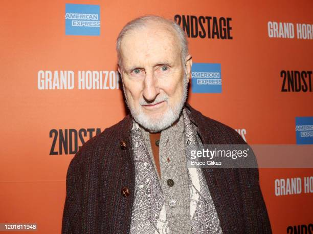 James Cromwell poses at the opening night after party for the new Second Stage play Grand Horizons on Broadway at The Ribbon on January 23 2020 in...
