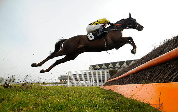 Image result for ascot jumping