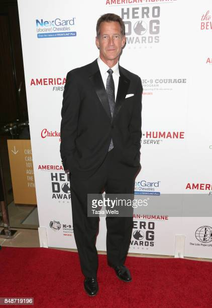 James Denton at the 7th Annual American Humane Association Hero Dog Awards at The Beverly Hilton Hotel on September 16 2017 in Beverly Hills...