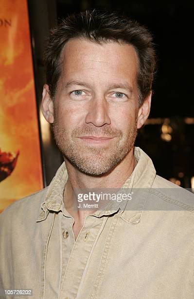 James Denton during Sahara Los Angeles Premiere Arrivals at Grauman's Chinese Theater in Hollywood California United States
