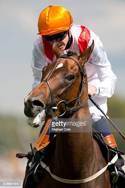 James Doyle on Mystic And Artist in The Whiteley Clinic Prestige Stakes race at 'Goodwood Bank Holiday Weekend' Goodwood Racecourse 23rd Aug 2014