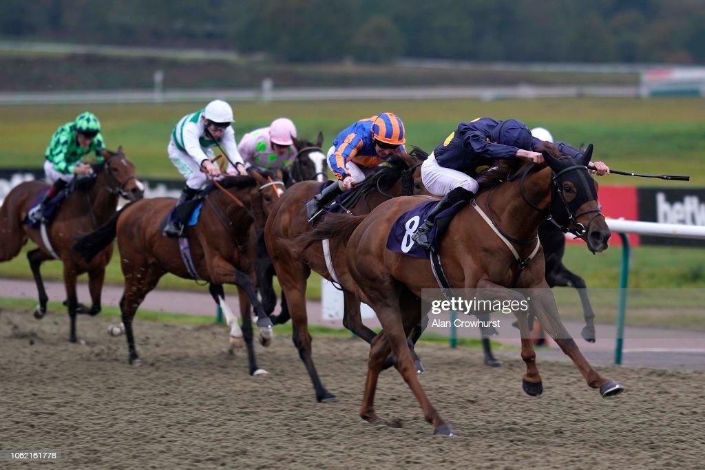 Lingfield Races : News Photo
