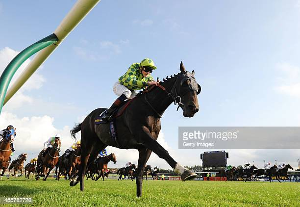 James Doyle riding Louis The Pious wins the The William Hill Ayr Gold Cup on September 20 2014 in Ayr Scotland