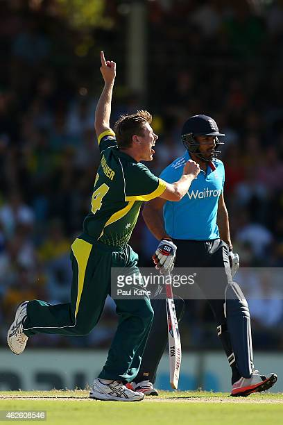 James Faulkner of Australia celebrates after dismissing Joe Root of England during the final match of the Carlton Mid One Day International series...