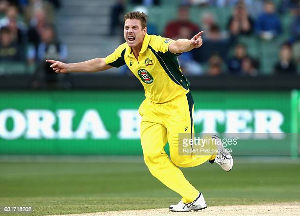 James Faulkner of Australia celebrates the wicket of Sharjeel Khan of Pakistan during game two of the One Day International series between Australia...