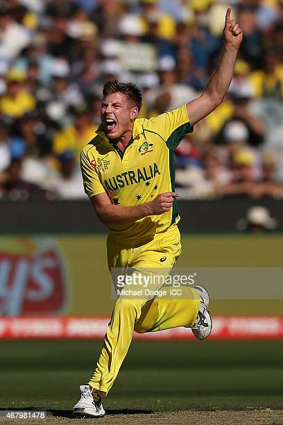 James Faulkner of Australia makes an appeal during the 2015 ICC Cricket World Cup final match between Australia and New Zealand at Melbourne Cricket...