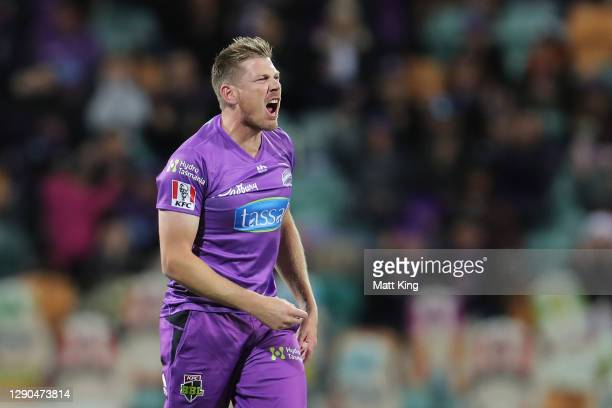 James Faulkner of the Hurricanes celebrates with team mates after taking the wicket of Josh Philippe of the Sixers during the Big Bash League match...