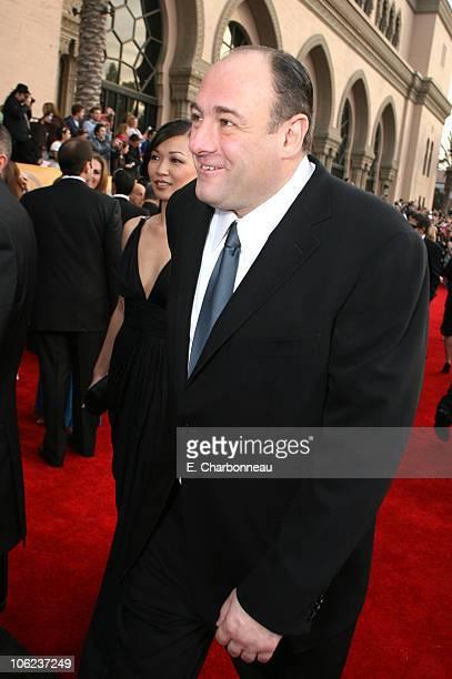 James Gandolfini and Deborah Lin during 13th Annual Screen Actors Guild Awards Red Carpet at Shrine Auditorium in Los Angeles California United States