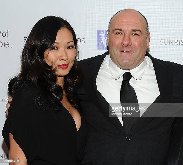 James Gandolfini and wife Deborah Lin attend the City Of Hope's Award Of Hope Gala Honoring Gerard Guez on November 20 2011 in West Hollywood...