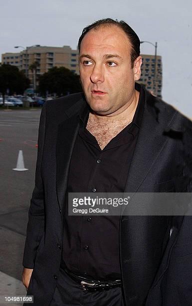James Gandolfini during 49th Annual Share Boomtown Party at Santa Monica Civic Auditorium in Santa Monica California United States
