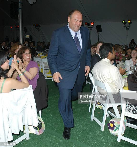 James Gandolfini during 'BuildABear Workshop' at Fresh Air Fund Spring Gala 2005 Inside at Tavern on the Green in New York City New York United States