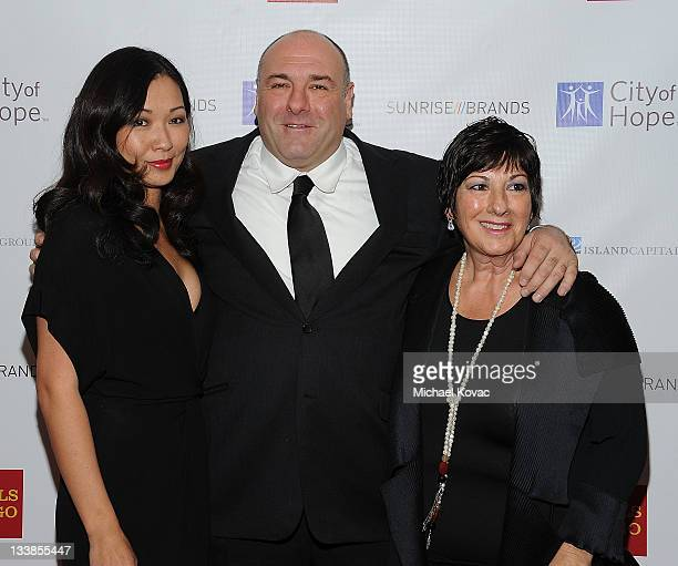 James Gandolfini wife Deborah Lin and guest attend the City Of Hope's Award Of Hope Gala Honoring Gerard Guez on November 20 2011 in West Hollywood...