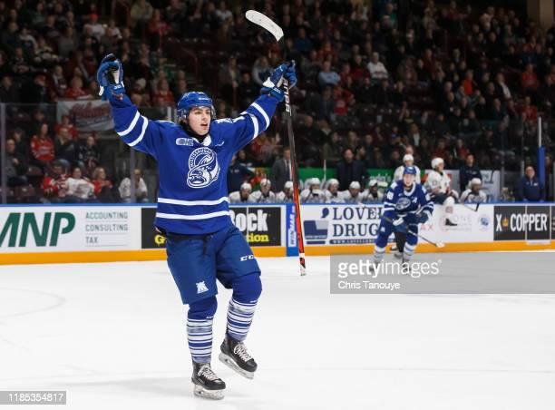 James Hardie of the Mississauga Steelheads celebrates after scoring during an OHL game against the Oshawa Generals at the Tribute Communities Centre...